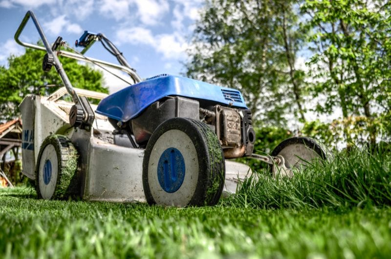 4 Tips to Help Your Lawn Beat the Heat